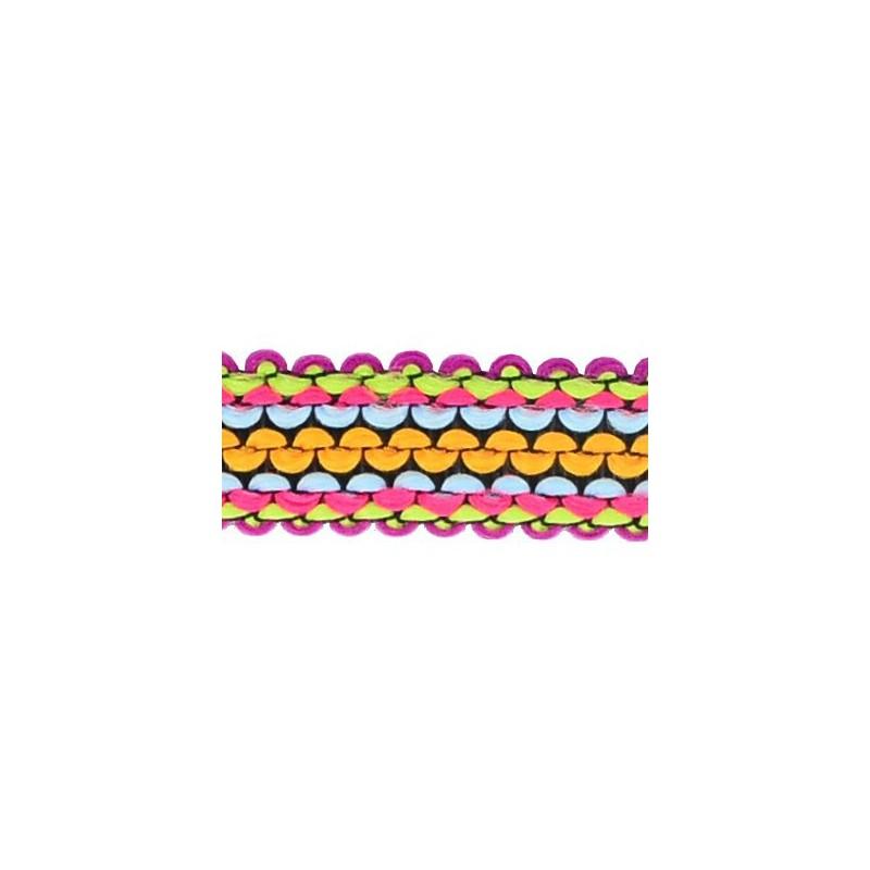 Tapacosturas multicolor